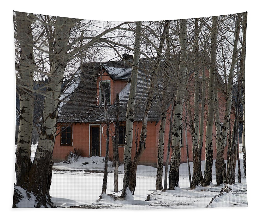 Pink Tapestry featuring the photograph Thee Old Pink House by Wildlife Fine Art