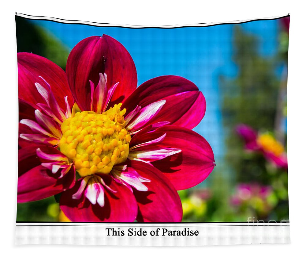Floral Tapestry featuring the photograph This Side Of Paradise by Tikvah's Hope