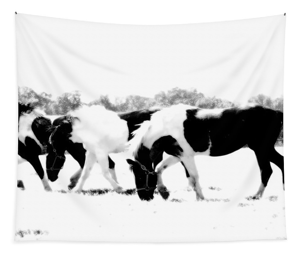 Draft Horse Tapestry featuring the photograph Three Of A Kind by Annette Persinger
