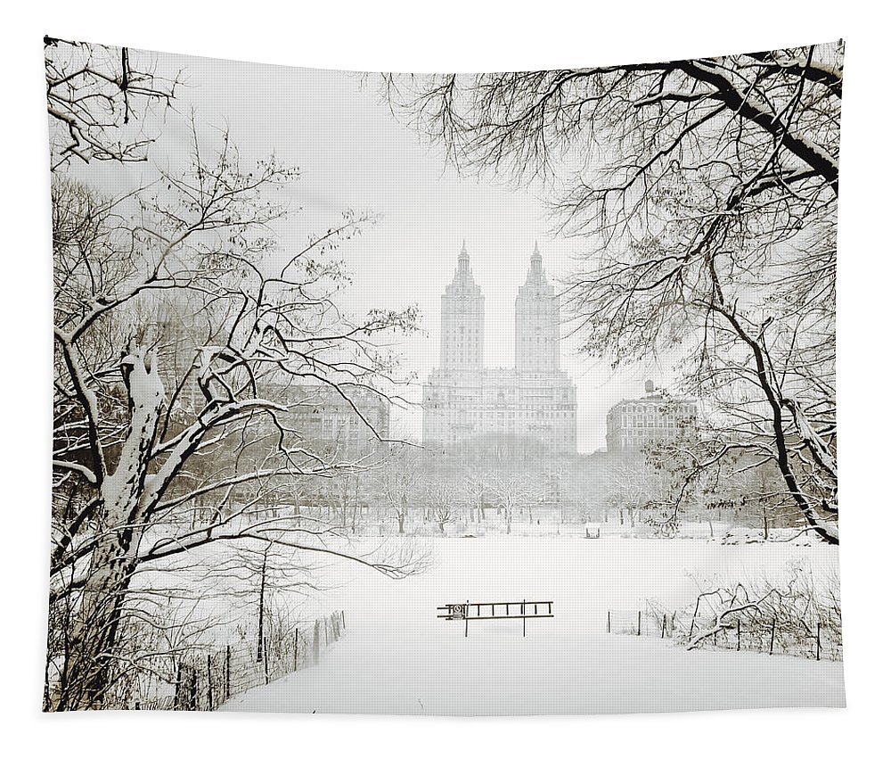 New York City Tapestry featuring the photograph Through Winter Trees - Central Park - New York City by Vivienne Gucwa