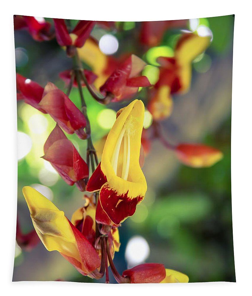 Thunbergia Mysorensis Tapestry featuring the photograph Thunbergia Mysorensis - Trumpetvine by Sharon Mau