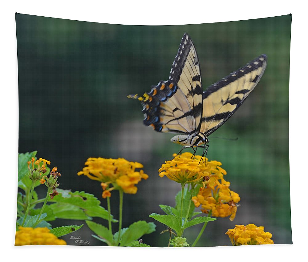 Eastern Tiger Swallowtail Butterfly Tapestry featuring the photograph Tiger Swallowtail And Lantana by Sandi OReilly