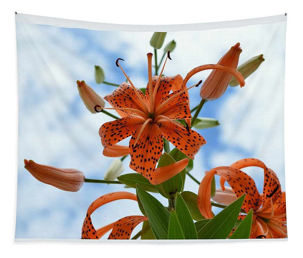 Flower Tapestry featuring the photograph Tigers In The Clouds 8566 by Bonfire Photography