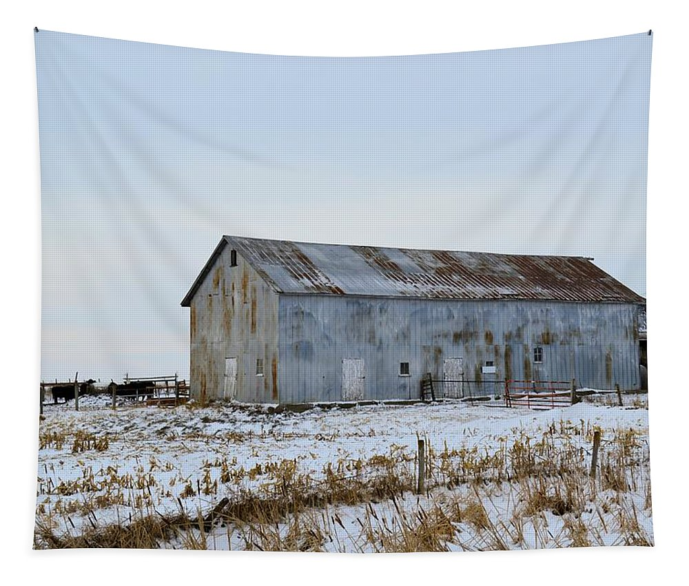 Tin Tapestry featuring the photograph Tin Barn Color by Bonfire Photography