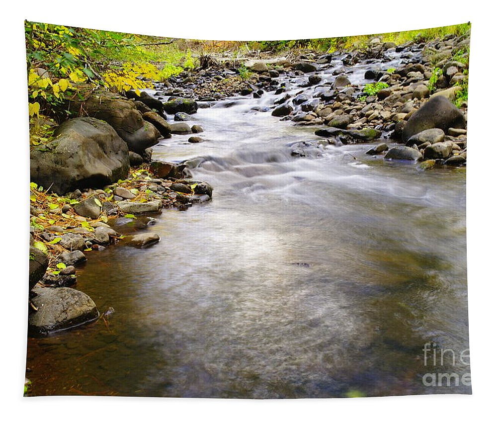 Water Tapestry featuring the photograph Tiny Rapids At The Bend by Jeff Swan
