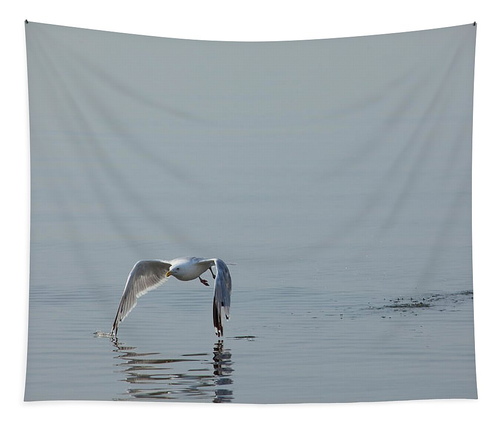 Gull Tapestry featuring the photograph Tips Touching by Karol Livote