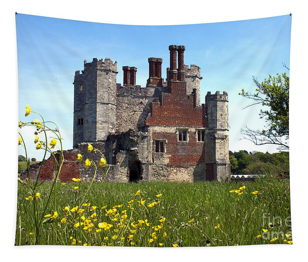Titchfield Abbey Tapestry featuring the photograph Titchfield Abbey Buttercups by Terri Waters