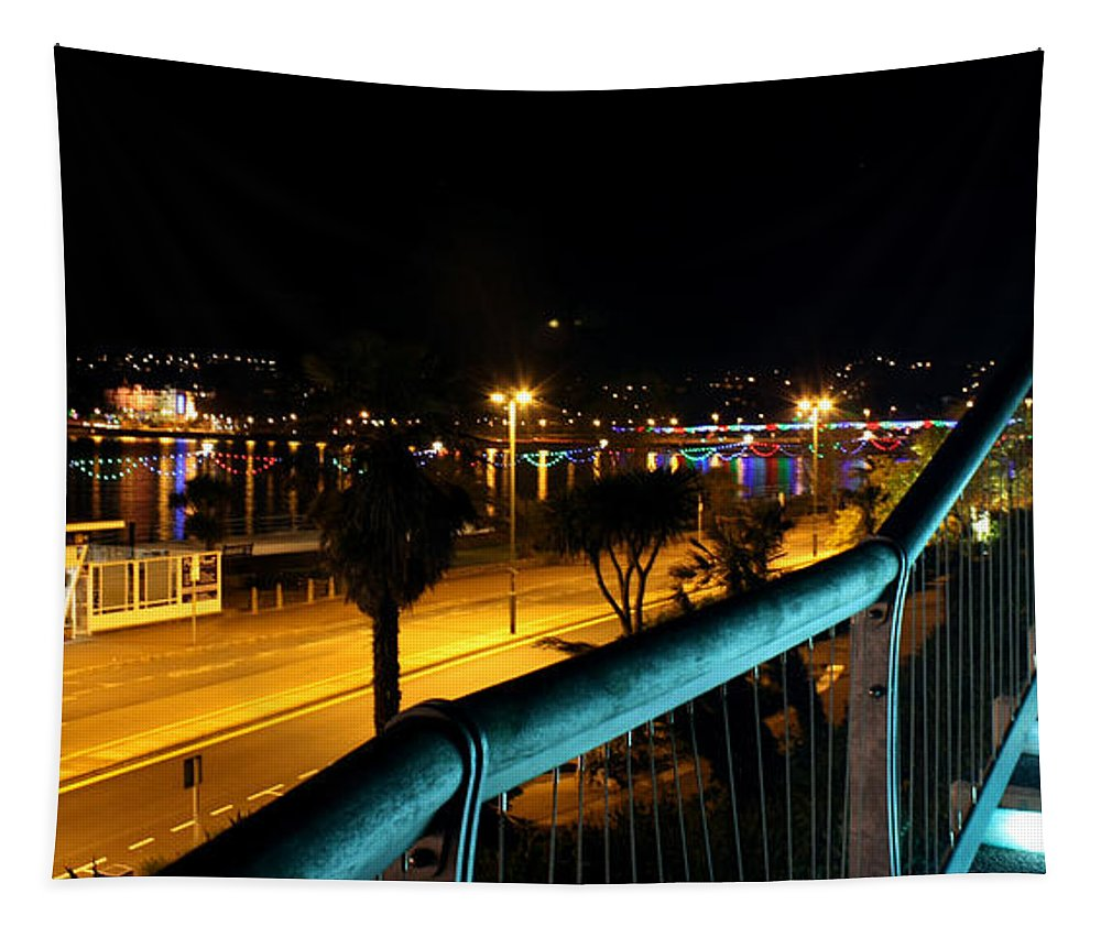Torquay Stairs Tapestry featuring the photograph Torquay Royal Terrace Gardens Steps At Night by Terri Waters