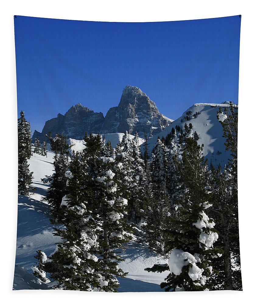 Grand Teton Tapestry featuring the photograph Towering Above Lies The Grand by Raymond Salani III