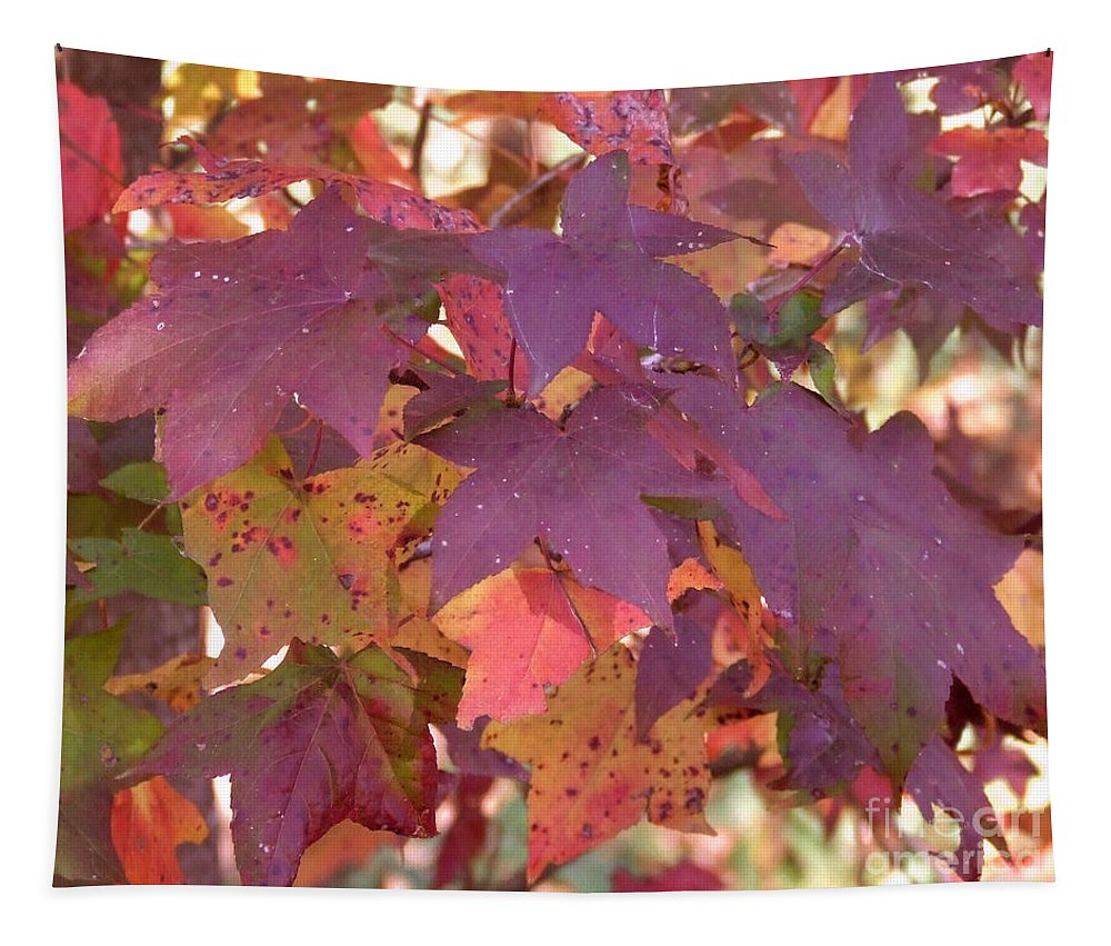 Fall Tapestry featuring the photograph Traces Of Fall by Andrea Anderegg