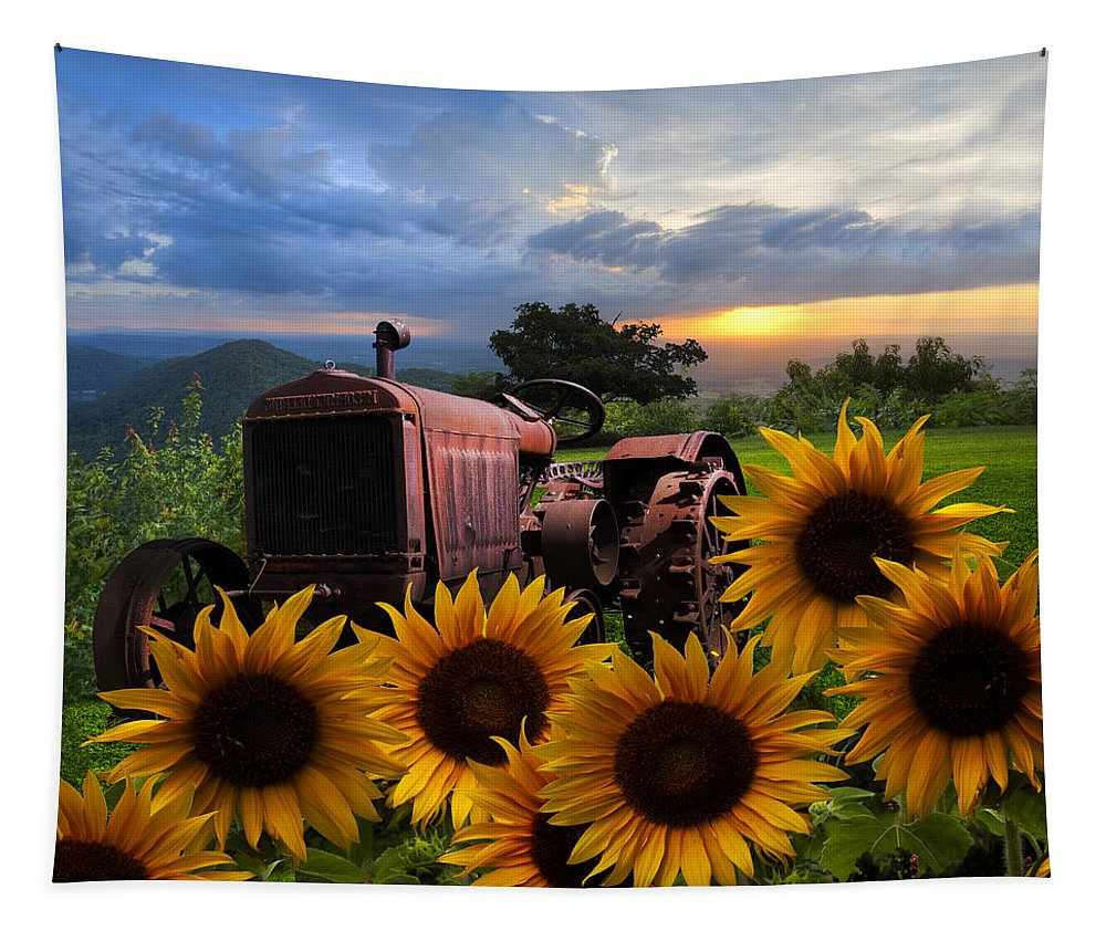 Appalachia Tapestry featuring the photograph Tractor Heaven by Debra and Dave Vanderlaan