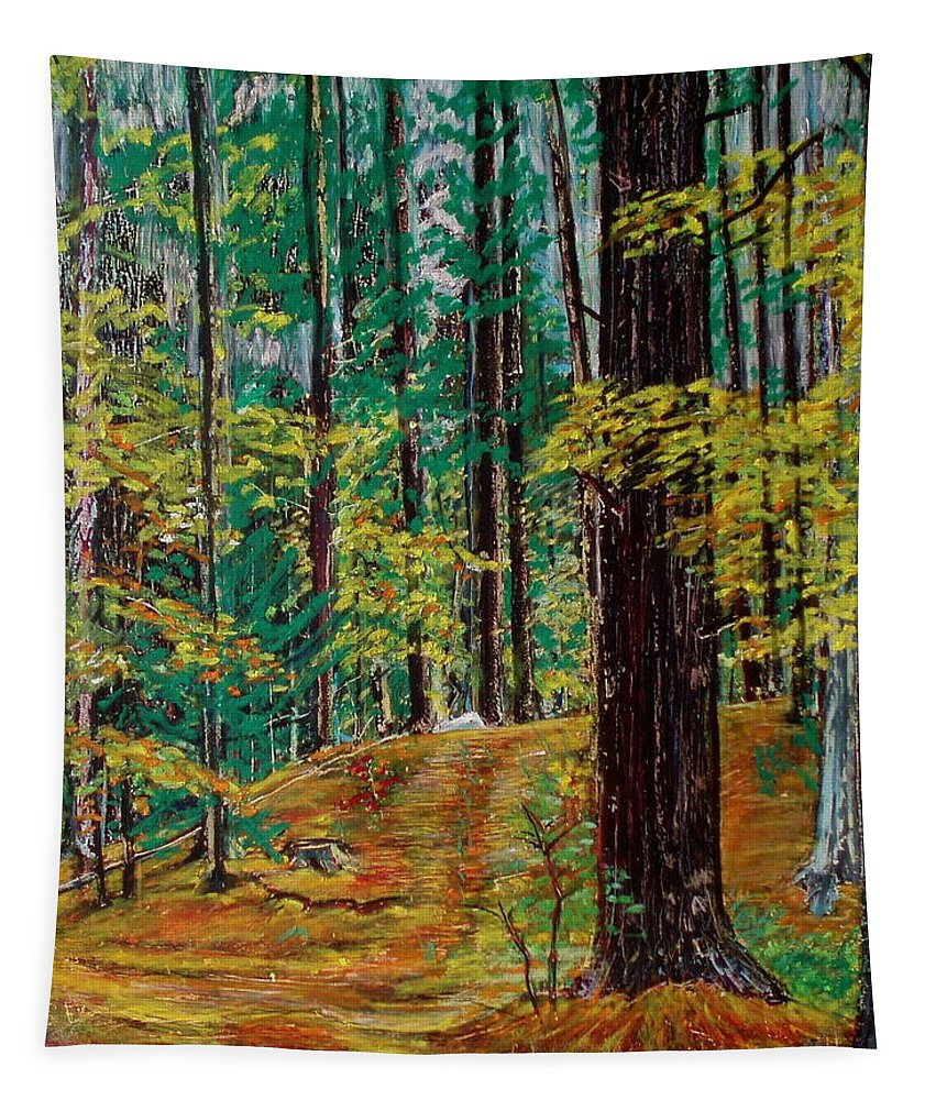 New Hampshire Tapestry featuring the pastel Trail At Wason Pond by Sean Connolly
