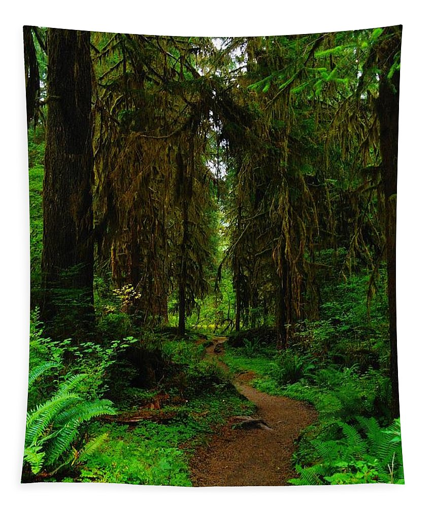 Green Tapestry featuring the photograph Trail Into The Forest by Jeff Swan