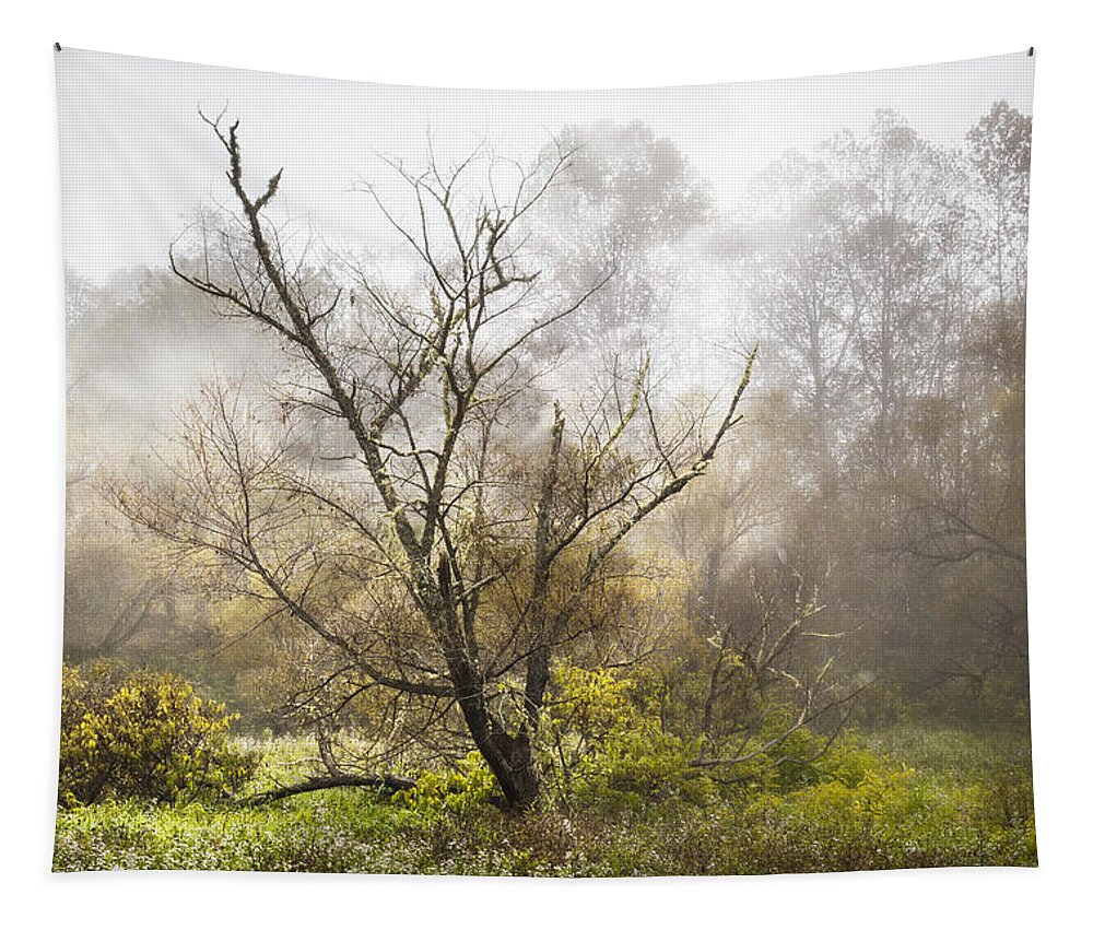Appalachia Tapestry featuring the photograph Tree In The Fog by Debra and Dave Vanderlaan