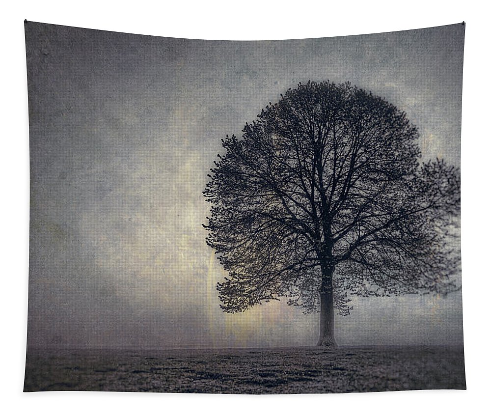 Tree Tapestry featuring the photograph Tree Of Life by Scott Norris