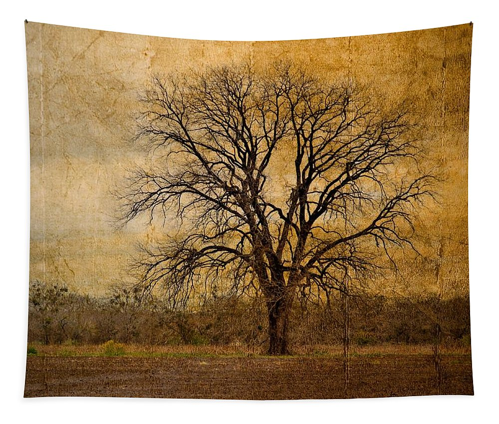 Tree Tapestry featuring the photograph Tree Spirit by Gary Richards