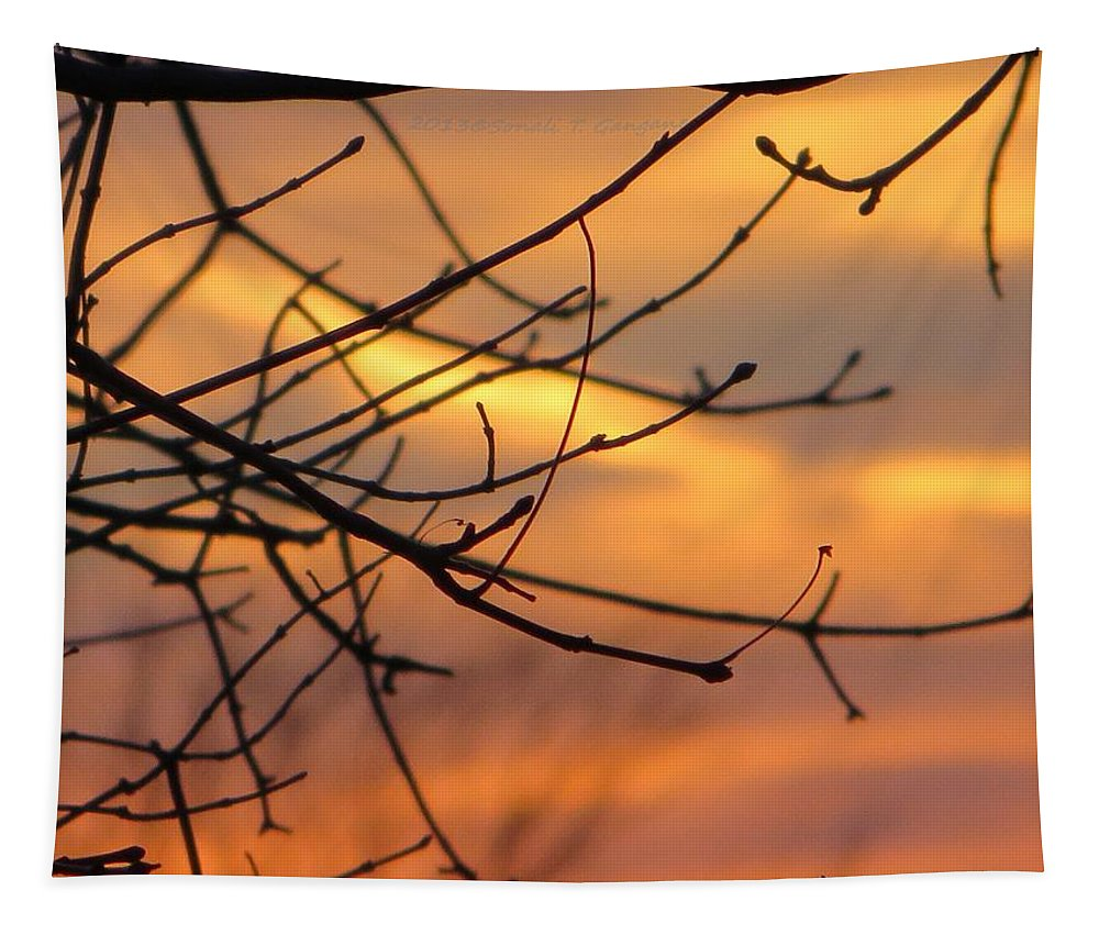 Trees Ablaze In Autumn Tapestry featuring the photograph Trees Ablaze In Autumn by Sonali Gangane