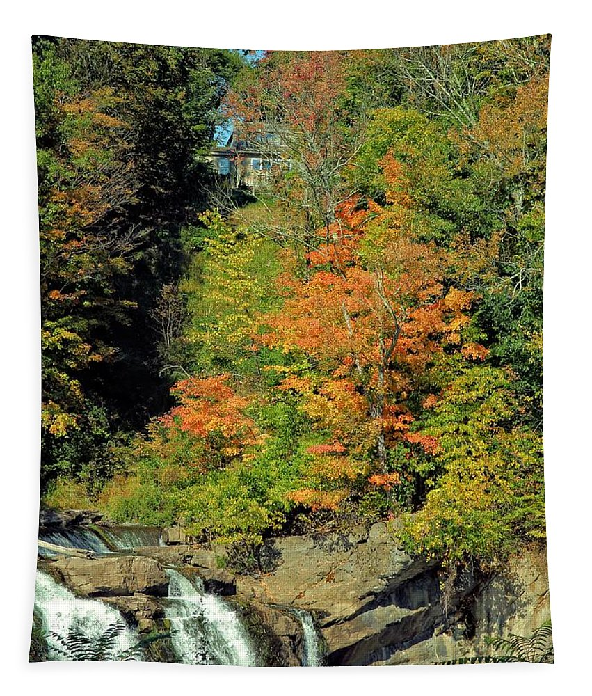 High Falls Tapestry featuring the photograph Trees And Falls by Robert McCulloch
