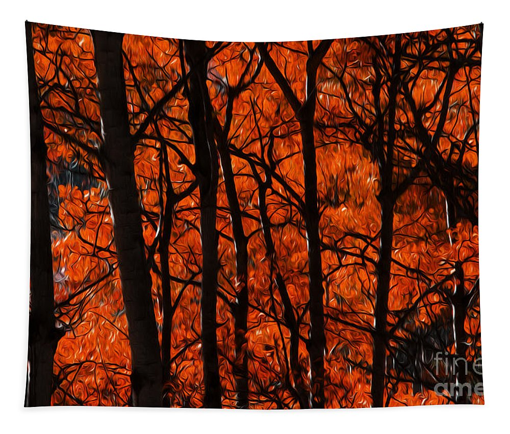 Tree Tapestry featuring the photograph Trees Of Autumn by Bob Christopher