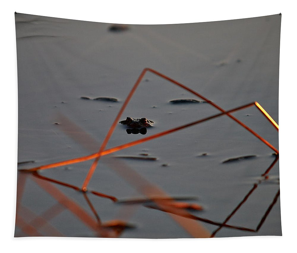 Finland Tapestry featuring the photograph Triangle Drama by Jouko Lehto