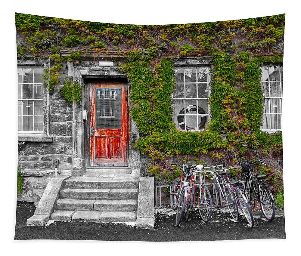 Trinity Tapestry featuring the photograph Trinity College Dorm - Dublin Ireland by Bill Cannon