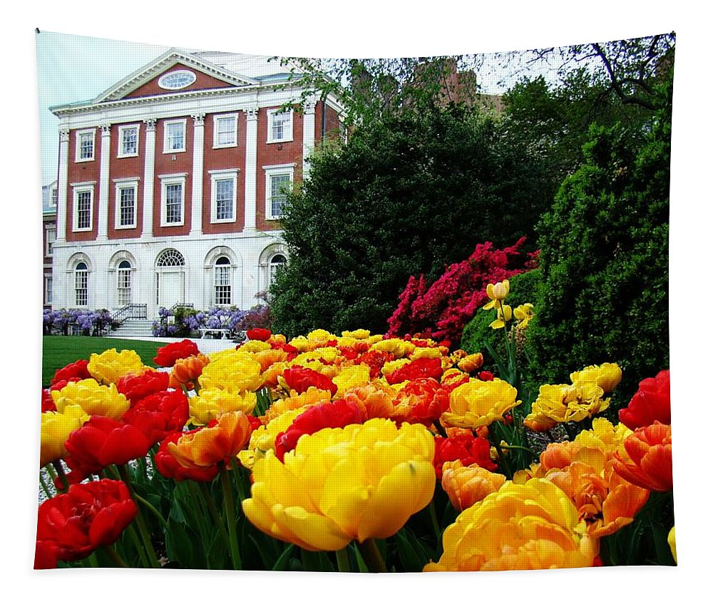 Philadelphia Tapestry featuring the photograph Tulip Love by Alice Gipson