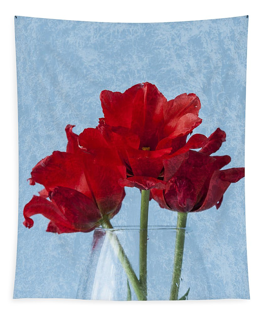 Red Tulips Tapestry featuring the photograph Tulips 2 by Steve Purnell
