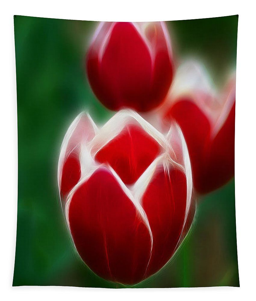 Tulip Tapestry featuring the photograph Tulips-6835-fractal by Gary Gingrich Galleries