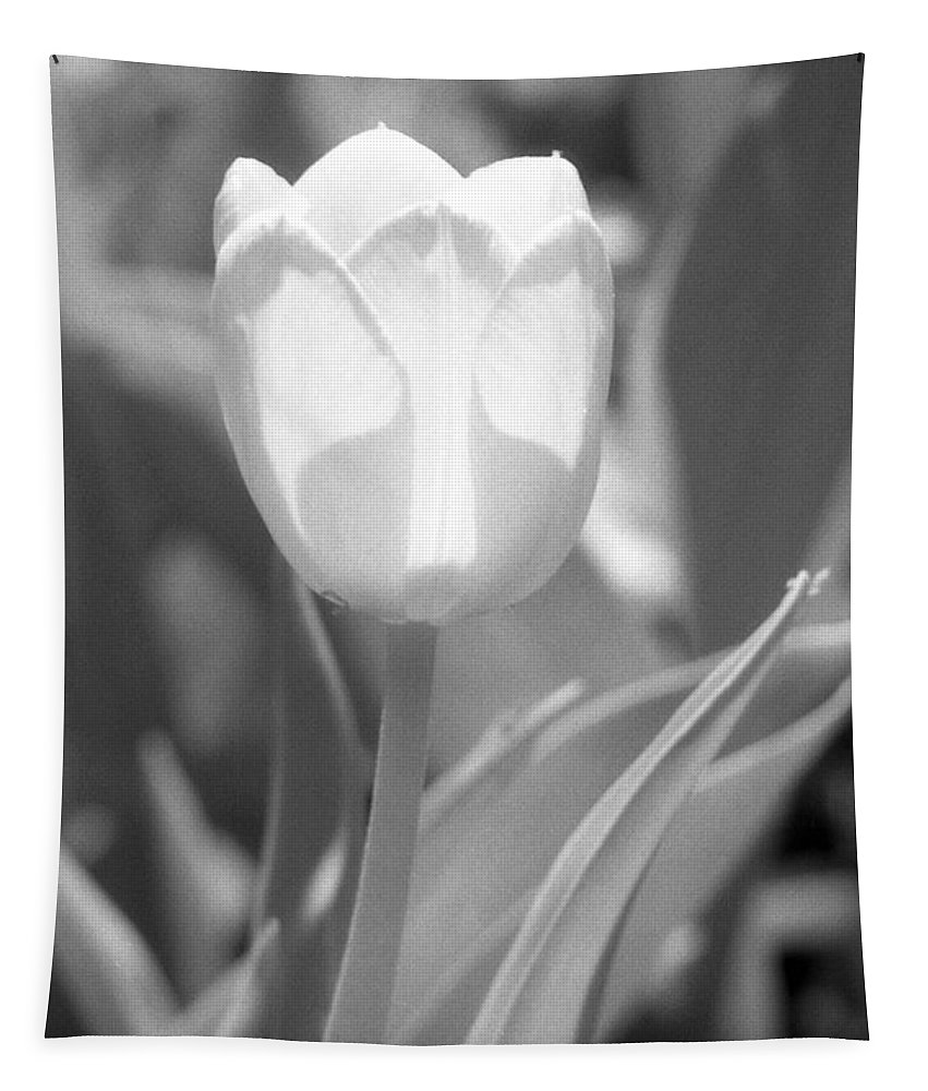 Tulip Tapestry featuring the photograph Tulips - Infrared 29 by Pamela Critchlow