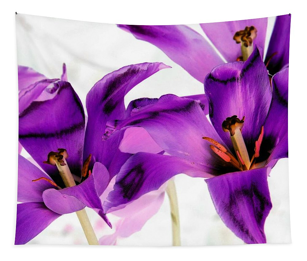 Tulip Tapestry featuring the photograph Tulips - Perfect Love - Photopower 2081 by Pamela Critchlow