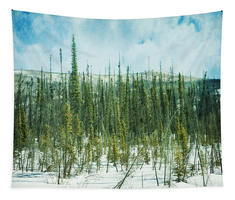 Forest Tapestry featuring the photograph Tundra Forest by Priska Wettstein