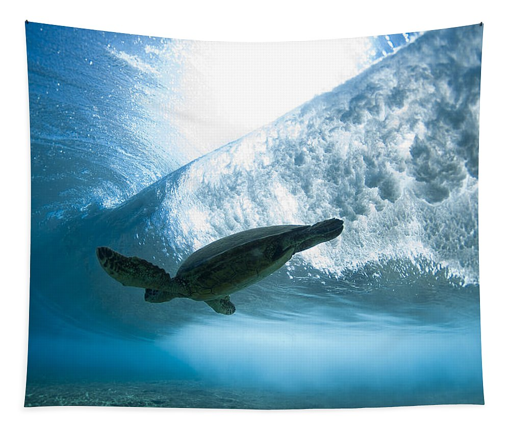 Sea Tapestry featuring the photograph Turtle Clouds by Sean Davey