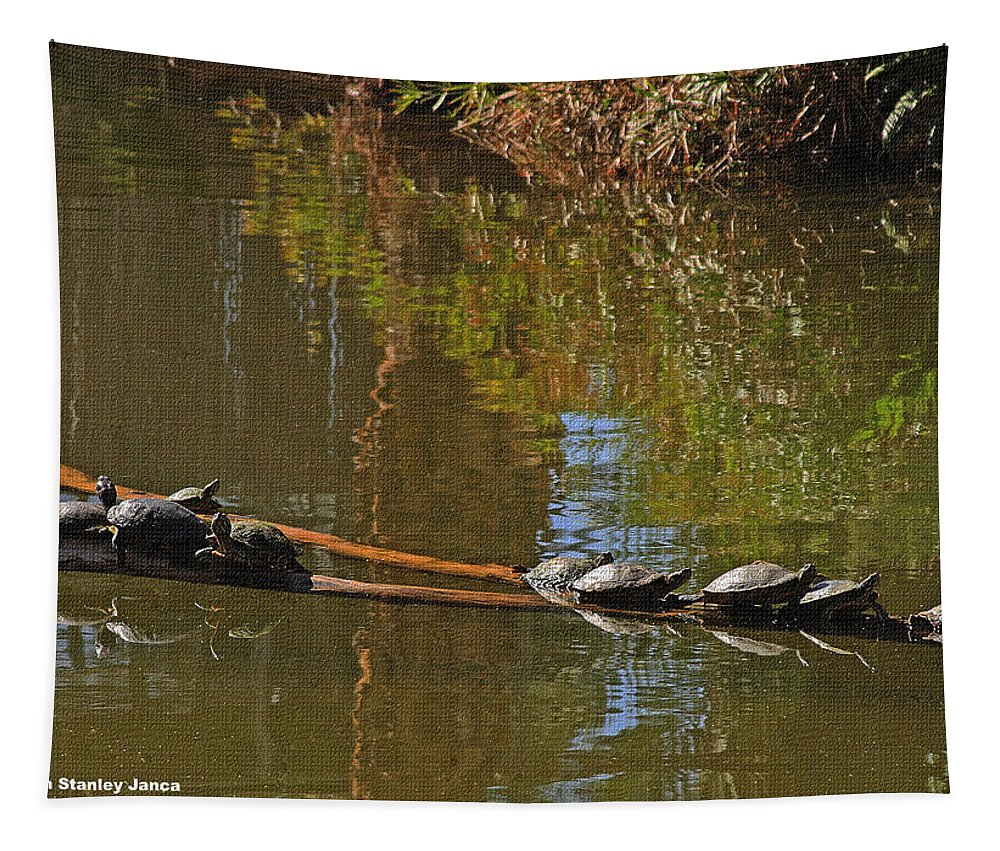 Turtles On A Log Tapestry featuring the photograph Turtles On A Log by Tom Janca