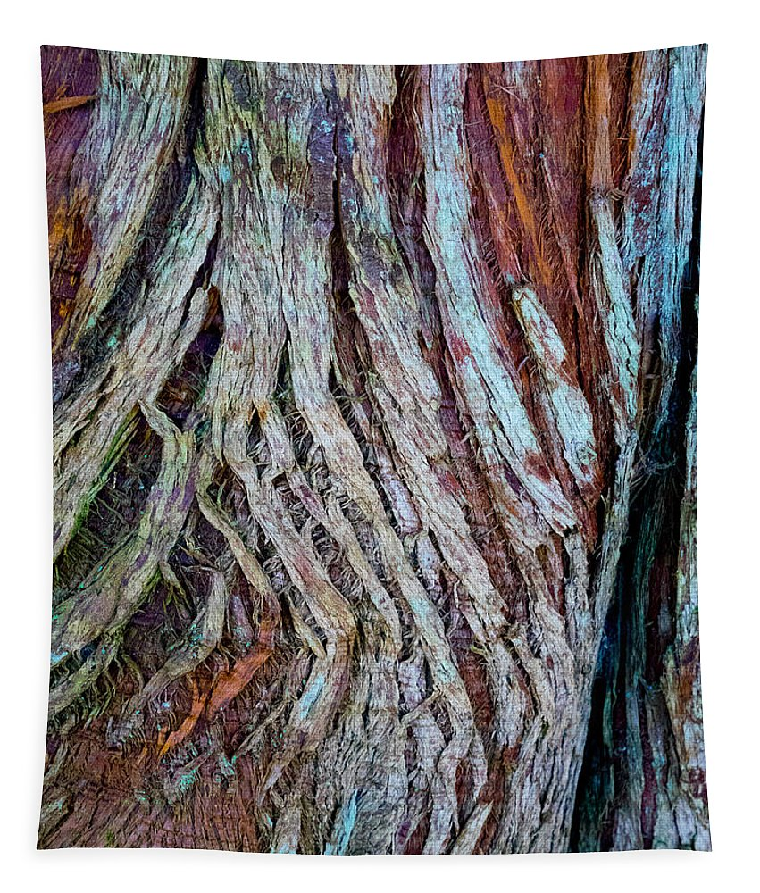 Wood Tapestry featuring the photograph Twisted Colourful Wood by Hakon Soreide