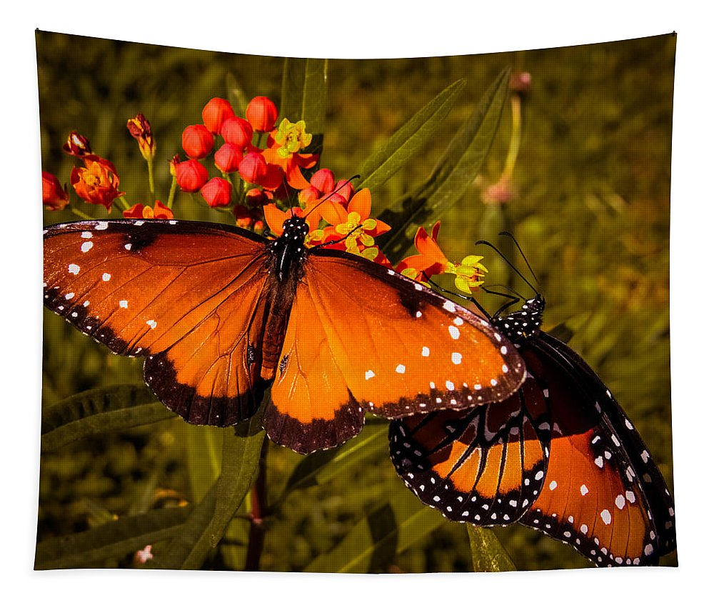 Butterfly Tapestry featuring the photograph Two Butterflies by Zina Stromberg