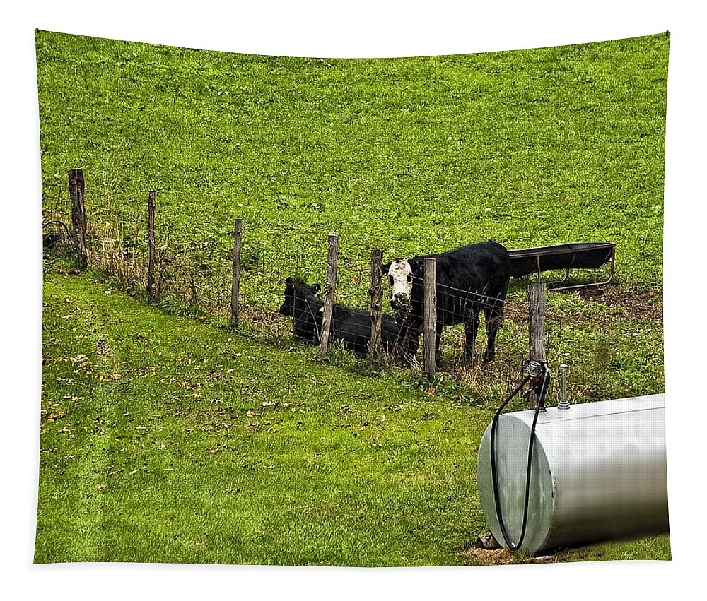 Glady Tapestry featuring the photograph Two Gas Sources by Steve Harrington