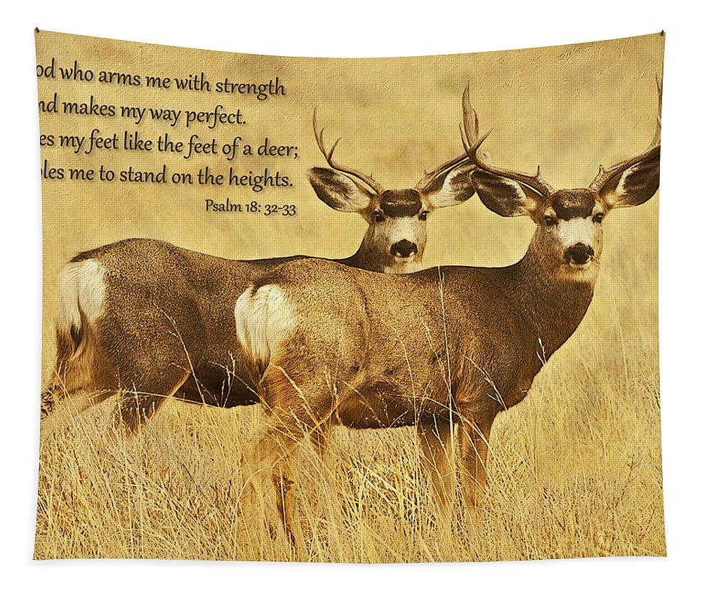 Deer Tapestry featuring the photograph Two Of A Kind by Priscilla Burgers