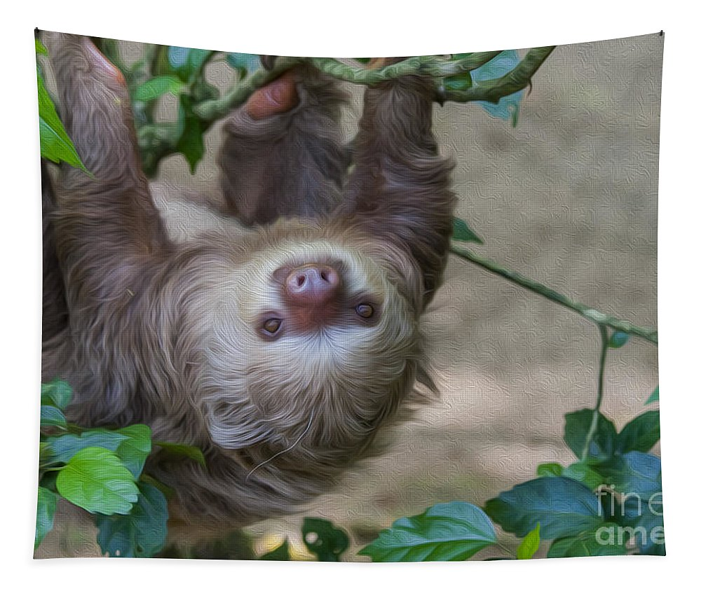 Close Up Tapestry featuring the digital art Two Toed Sloth Hanging In Tree by Patricia Hofmeester