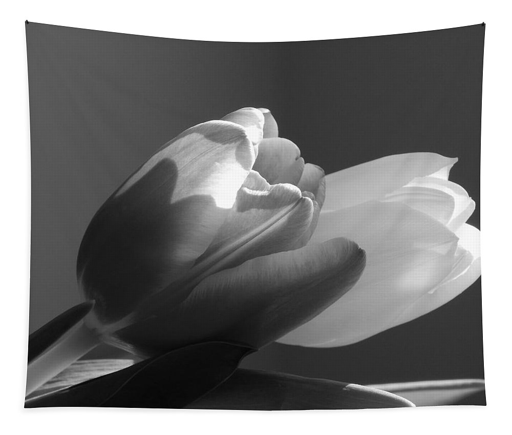 Two Tulips Tapestry featuring the photograph Two Tulips In Black And White by Karen Cook