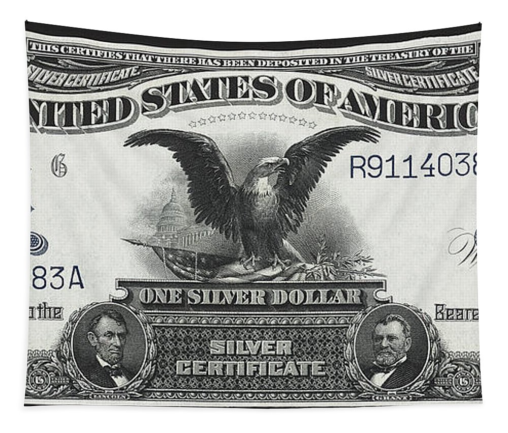 silver Certificate Tapestry featuring the photograph U. S. Silver Certificate 1899 by Daniel Hagerman