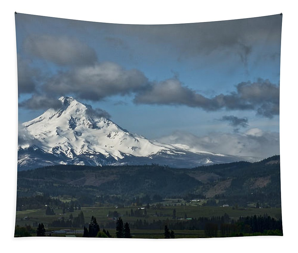 Mt. Hood Tapestry featuring the photograph Unveiled by Don Schwartz