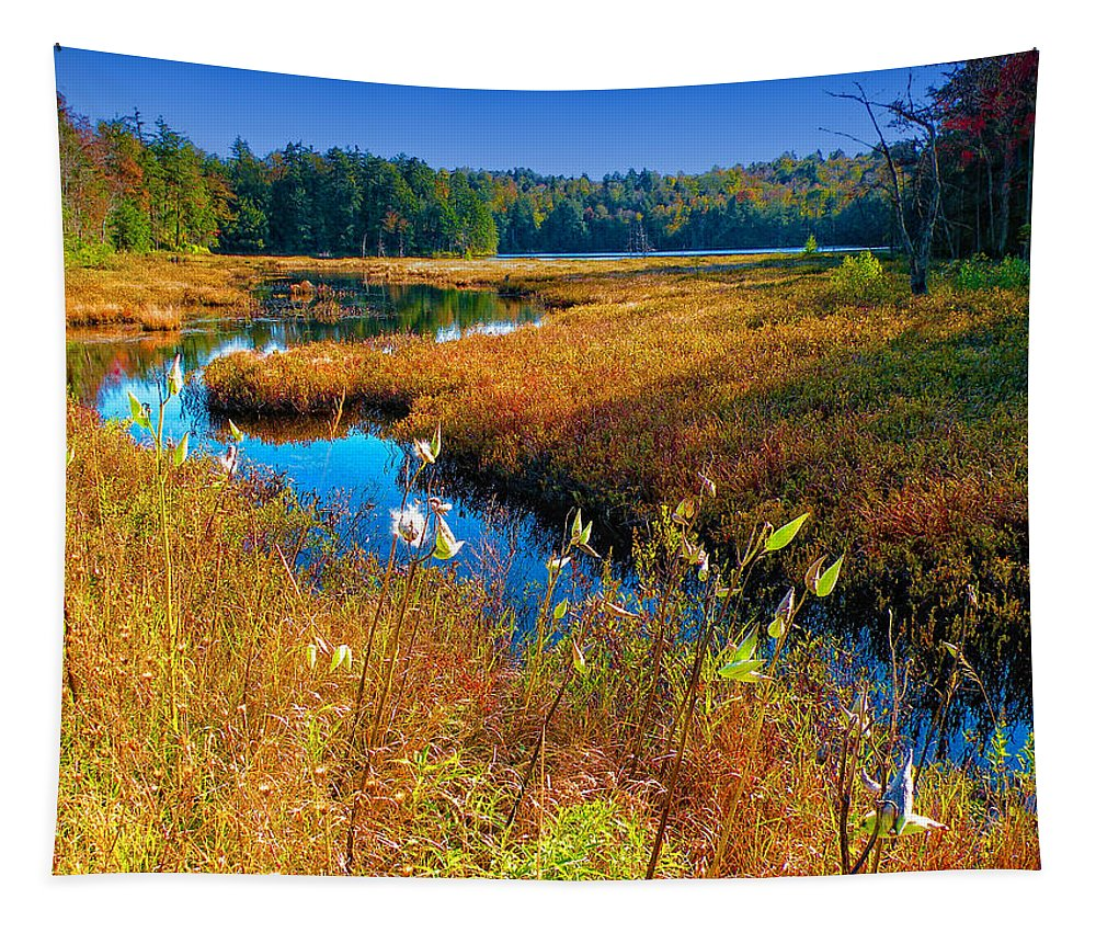 Adirondack's Tapestry featuring the photograph Upper Cary Lake In The Adirondacks by David Patterson