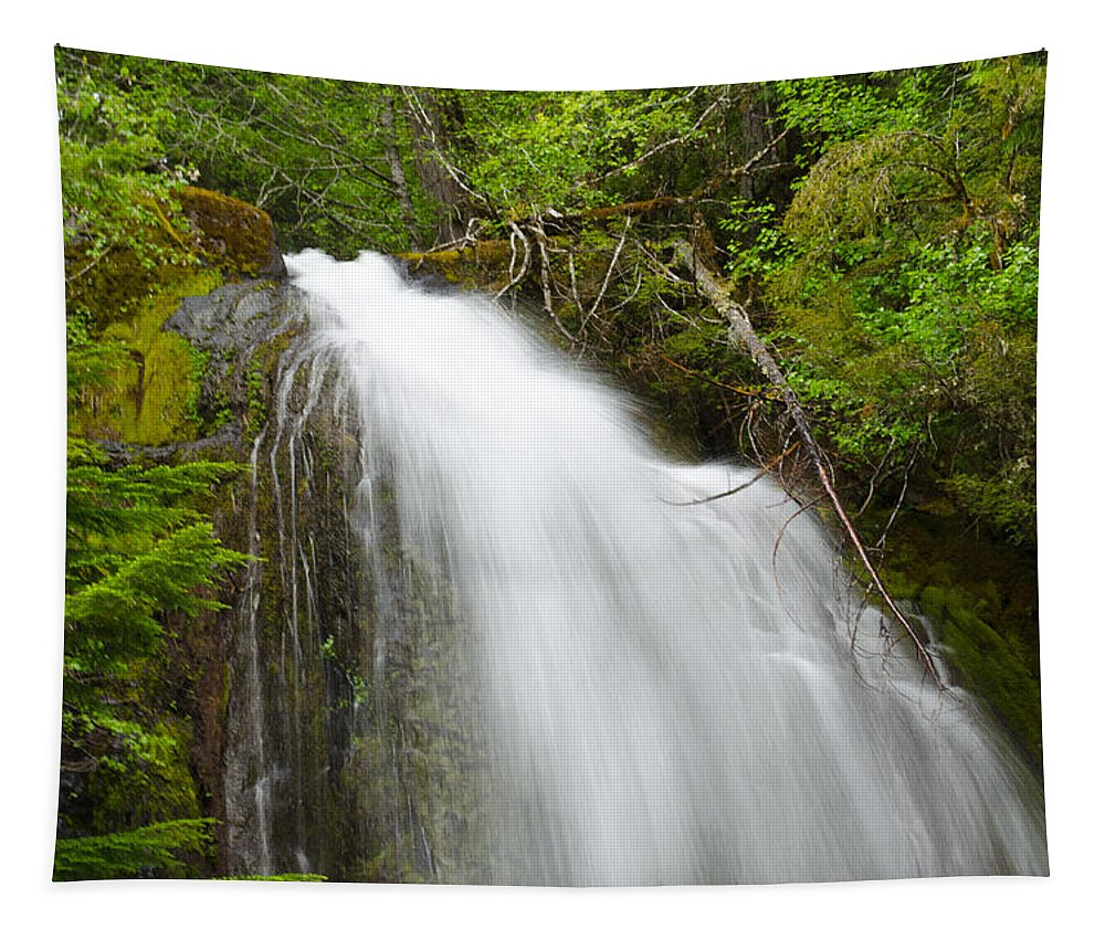 Water Tapestry featuring the photograph Upper Cougar Falls by Tikvah's Hope