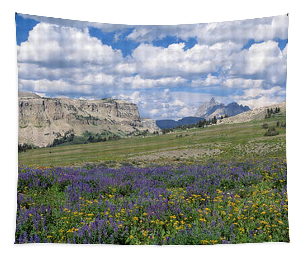 Photography Tapestry featuring the photograph Usa, Wyoming, Grand Teton Park by Panoramic Images