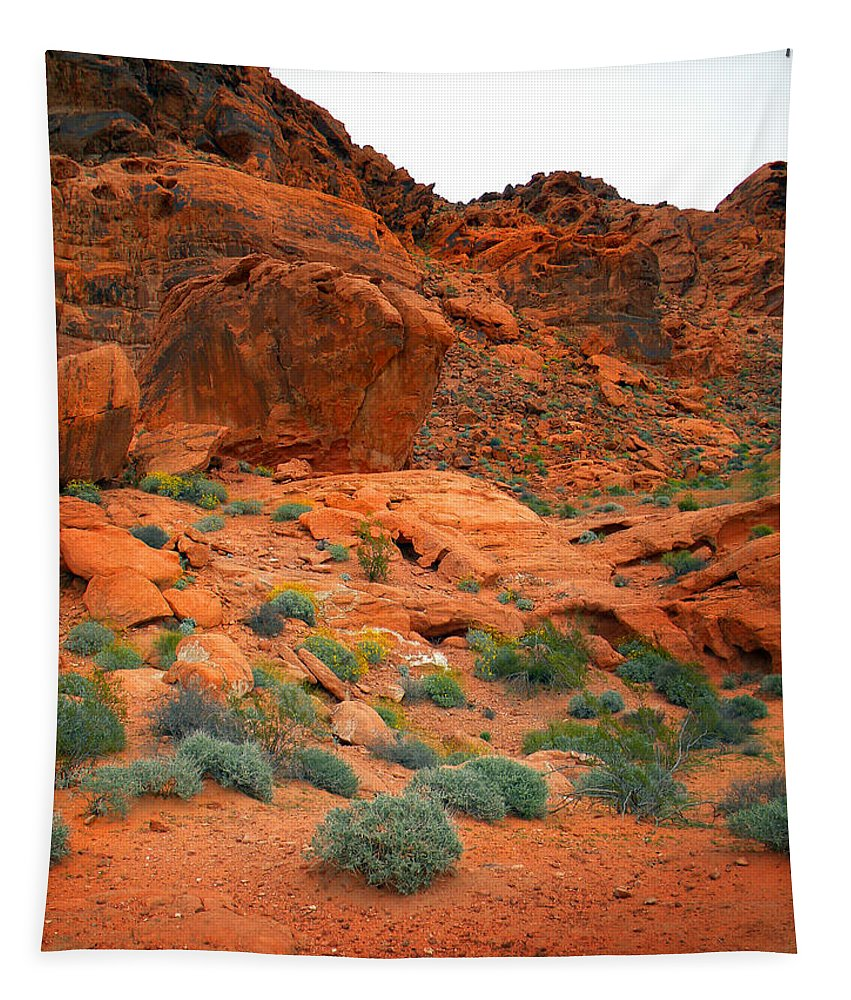 Valley Of Fire Tapestry featuring the photograph Valley Of Fire Red Sandstone Cliffs by Frank Wilson