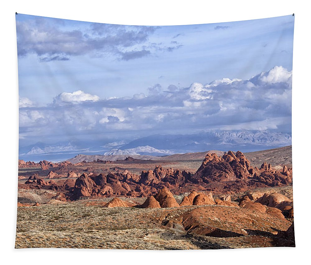 Valley Of Fire Tapestry featuring the photograph Valley Of Fire Vista by Debby Richards