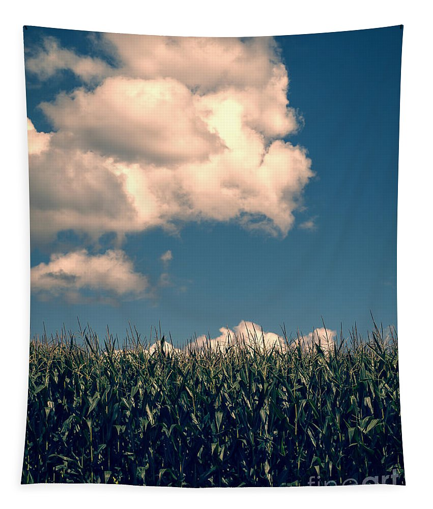 Cloud Tapestry featuring the photograph Vermont Cornfield by Edward Fielding