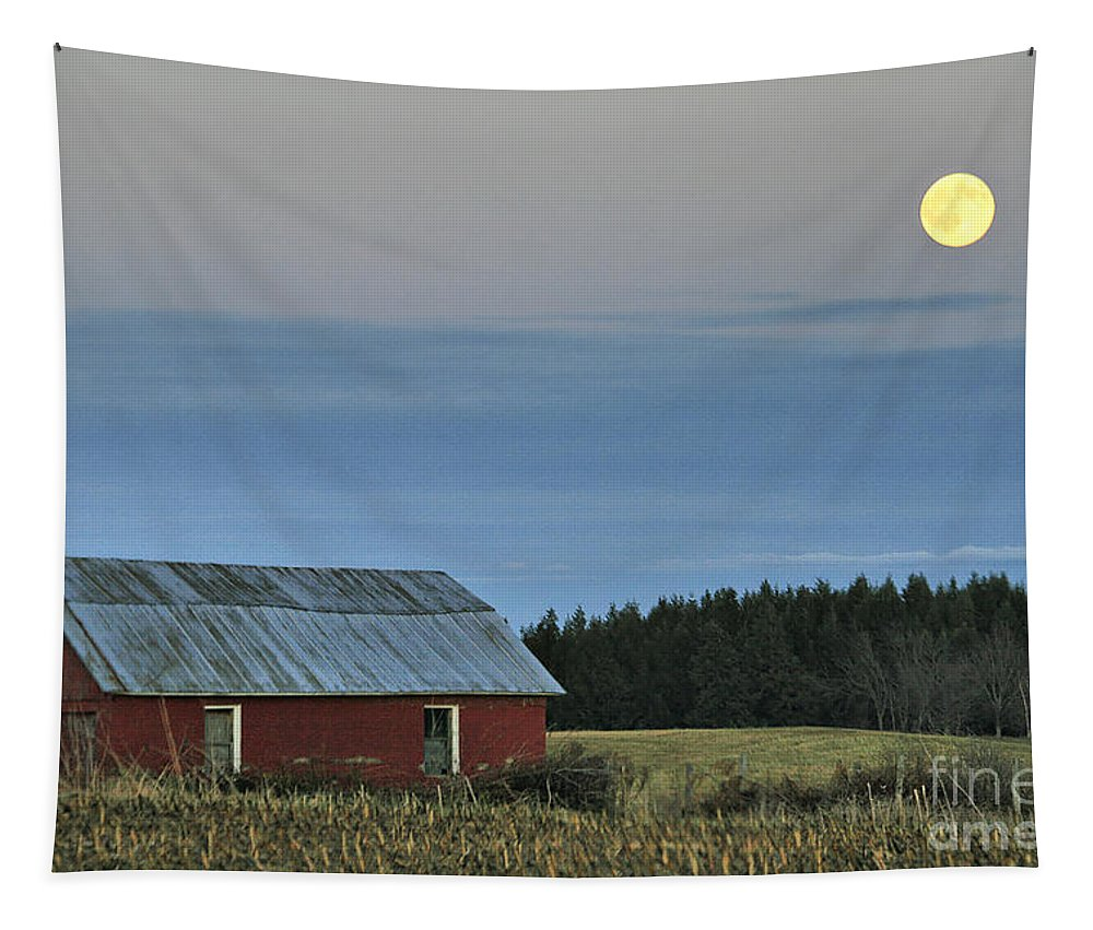 Moon Tapestry featuring the photograph Vermont Full Moon by Deborah Benoit