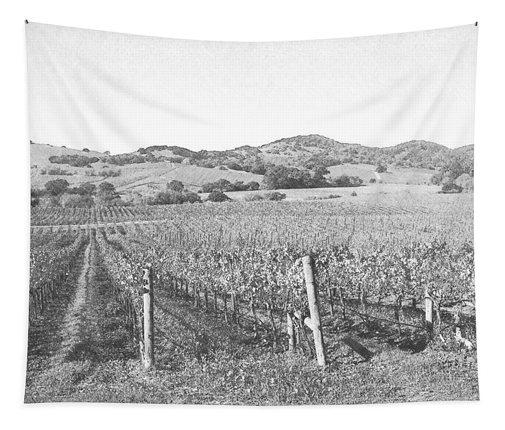 Vineyard Tapestry featuring the photograph Vineyards by Frank Wilson