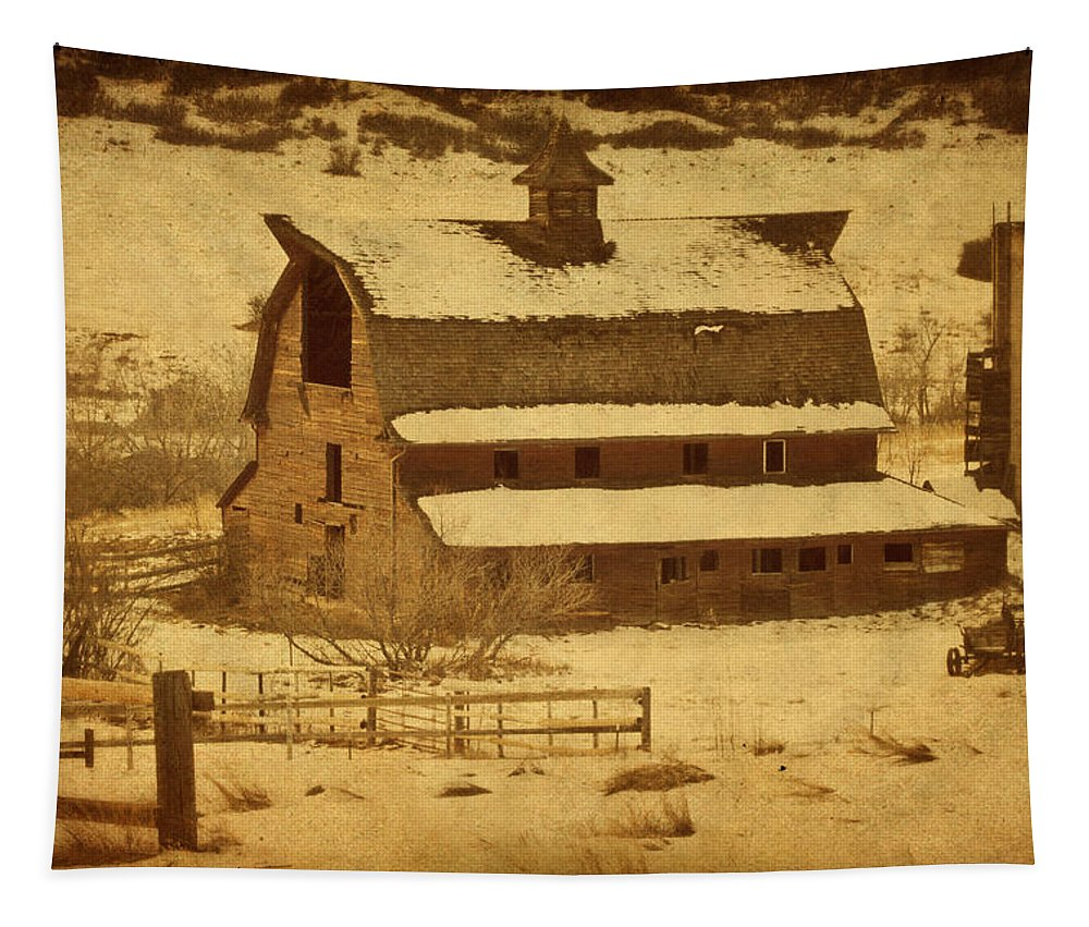 Barn Tapestry featuring the photograph Vintage Perry Park Barn by Priscilla Burgers